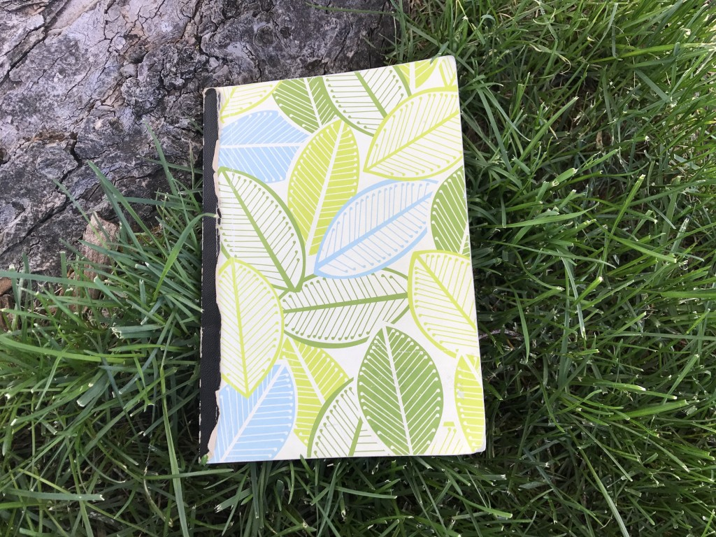 notebook in grass